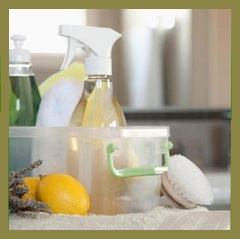 Healthy Home Products